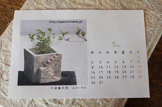 20110519c.jpg